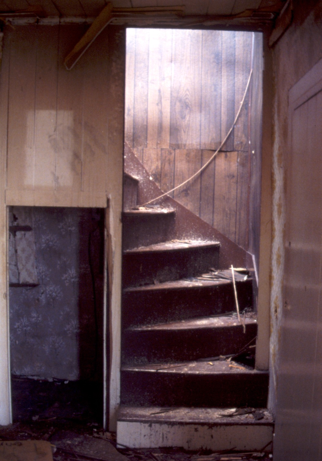 lot_12_lewis_young_house_stairs
